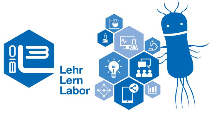 Lehr-Lern-Labor Module
